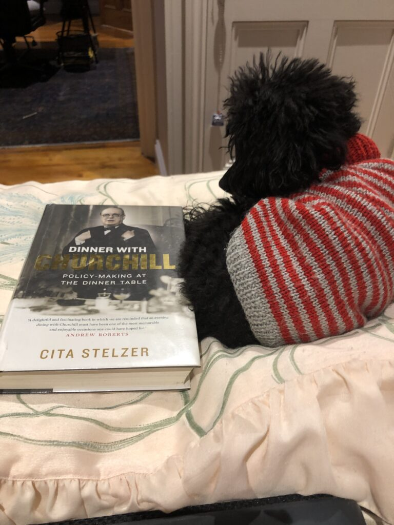 A picture of my black poodle Rosie wearing a grey and red jumper with the book Dinner with Churchill by Cita Seltzer