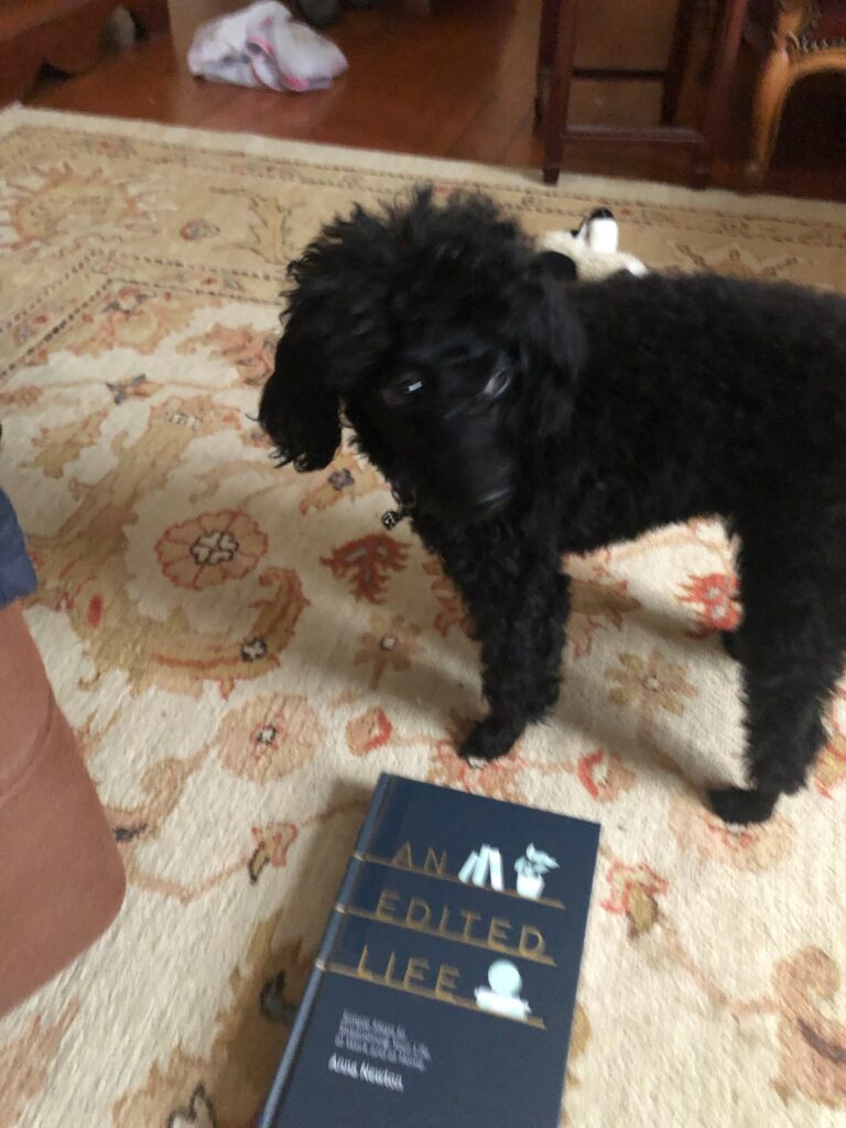 "A picture of my dog Rosie with the book ""An Edited Life"""