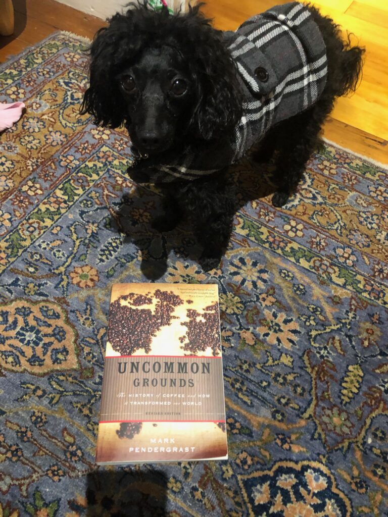 Picture of my dog Rosie in her coat with the book Uncommon Grounds