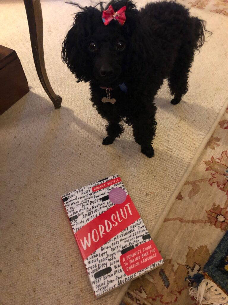 A picture of my dog Rosie with a pink bow in front of the book Wordslut by Amanda Montell.