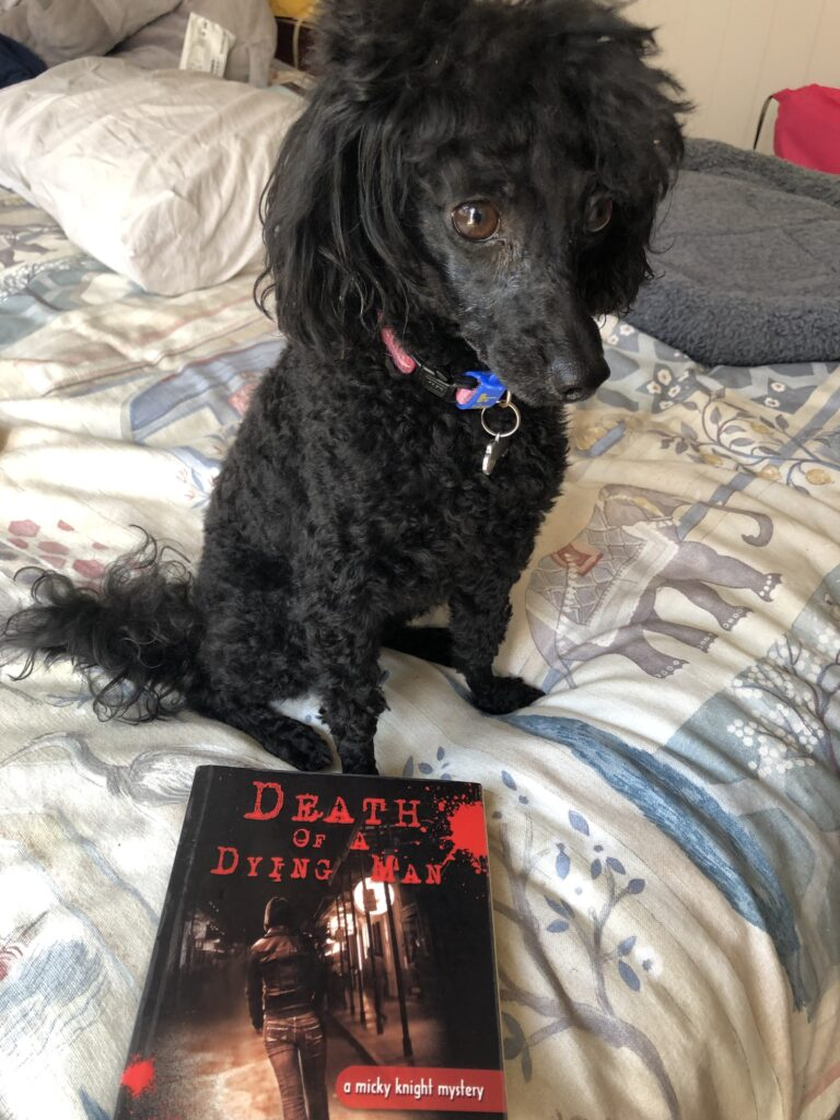 "My black poodle Rosie with the book ""Death of a Dying Man"" by JM Redmann"