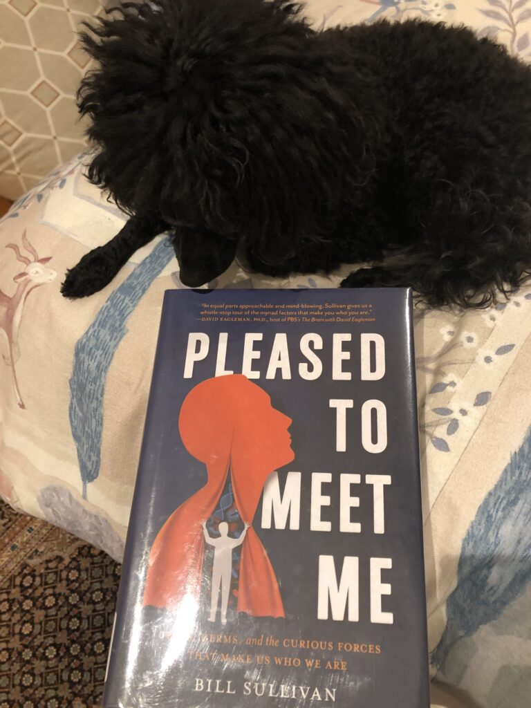 "My dog Rosie look at the book ""Pleased to Meet Me"" by Bill Sullivan"