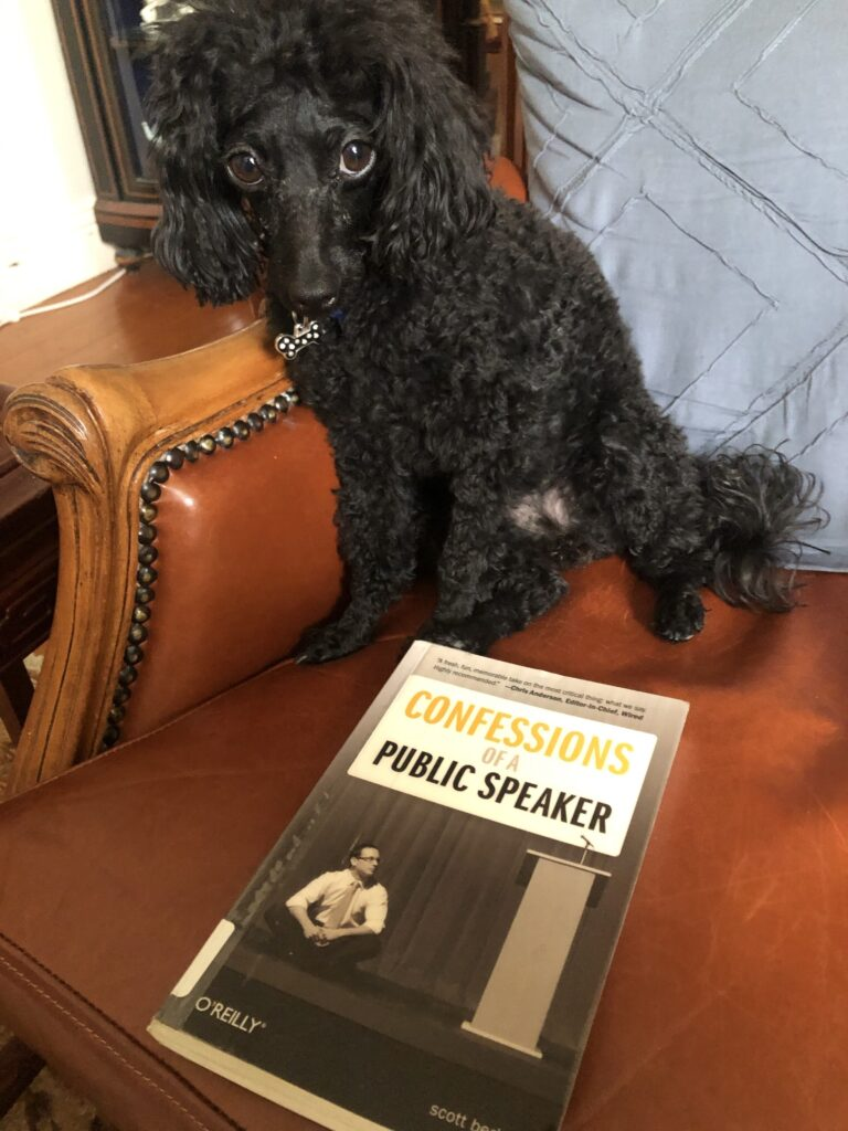 "A picture of my dog Rosie, sitting on a leather couch,  with the book ""Confessions of a Public Speaker"" by Scott Berkun"
